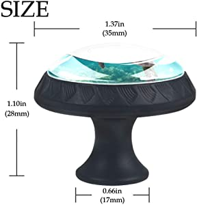 Turtle C3 Cabinet knob Crystal Glass Furniture Round knobs for Kid's Gift to décor Kids Room Best Home décor for Cabinet Cupboard Dresser Pack of 4 1.38 X 1.1 inch
