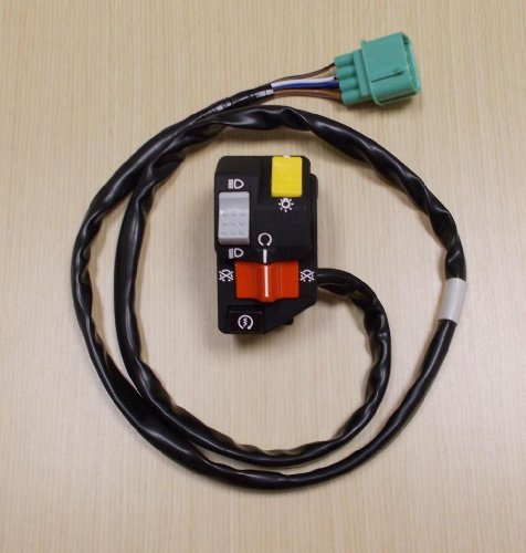 2000-2005 Honda TRX 350 TRX350 Rancher Foot Shift Start Kill Light Switch