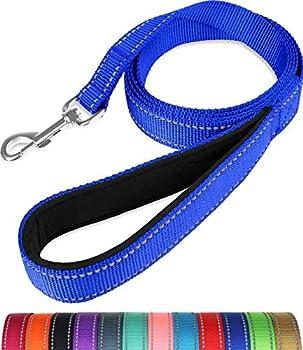 Taglory Laisse de Dressage réfléchissante pour Chien, poignée rembourrée en néoprène et Crochet en métal, 1.2m x 2.0cm Laisse en Nylon pour Petits Chiens, Bleu Foncé