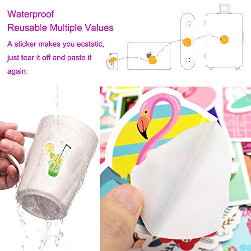 PietyPet Niedliche Hawaii Aufkleber 210 Stück, Wasserdicht Vinyl Stickers Graffiti Style Decals für Wasserflasche und Auto Motorräder Fahrrad Skateboard Snowboard Gepäck Laptop