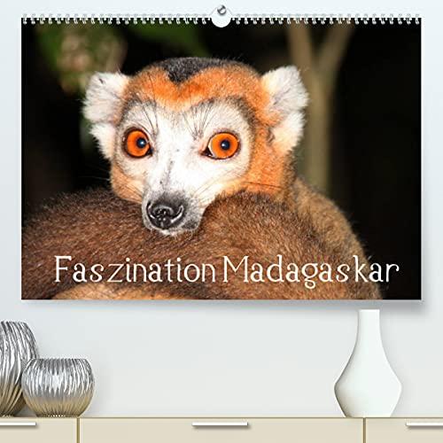 Faszination Madagaskar (Premium, hochwertiger DIN A2 Wandkalender 2021, Kunstdruck in Hochglanz)