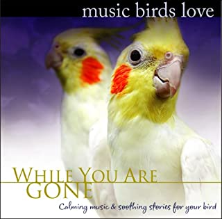 Music Birds Love: While You Are Gone (Soothing Music for Birds, Parrots, Budgerigar, Cockatoo Separation Anxiety)