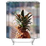 DOLOVE Anti-Schimmel Duschvorhang Polyester Waschbar Ananas Sonnenschein Apfel Duschvorhang 150x200 cm Duschvorhang Bunt