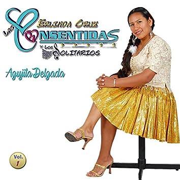 Agujita Delgada (Vol. 1)