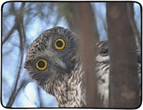 GIRLOS Curious Looking Powerful Owl Sydney Australia Portable and Foldable Blanket Mat 60x78 Inch Handy Mat for Camping Picnic Beach Indoor Outdoor Travel