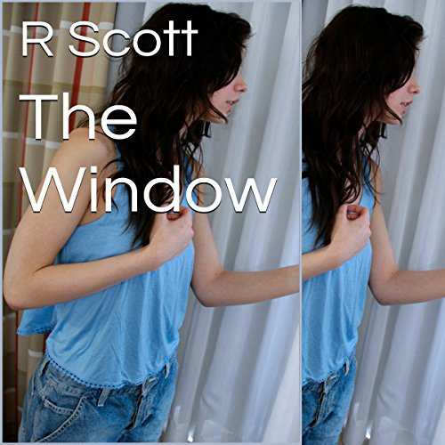 The Window audiobook cover art