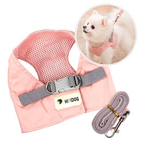PTN Arnés para Perros y Conjunto de Correa, Nuevo Chaleco de Nailon de Malla Suave, Cuerda de Remolque con Bonito Chaleco Rosa para Perros Pequeños y Medianos L (4,5 kg-5,5 kg)