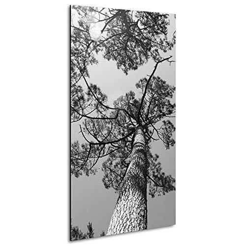 Vertikale Décoration Murale Tableau Alu Pins Maritimes des Landes Noir et Blanc 120 x 60 cm