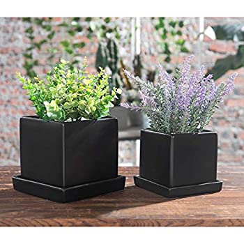 MyGift Matte Black Ceramic Small Square Succulent Planter Pots with Removable Plant Trays & Drainage Holes Set of 2
