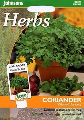 Portal Cool Johnsons Seeds - Paquet Pictorial - Herb - Coriandre Coriandre Leaf - 150 graines
