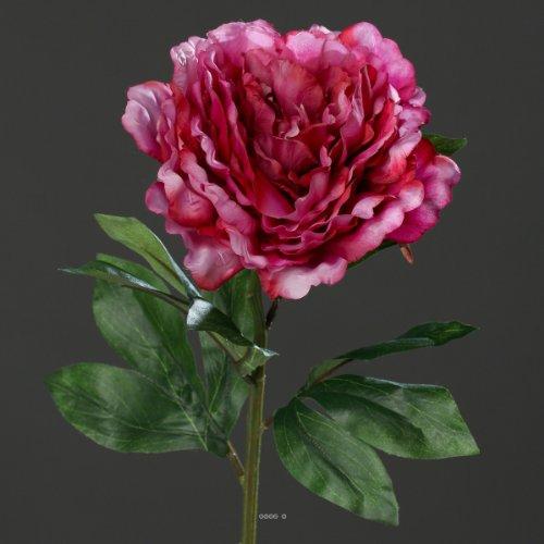 Artificielles.com - Pivoine Artificielle Rose Fushia H 63 cm Tres Belle Tete - Couleur: Rose Fushia