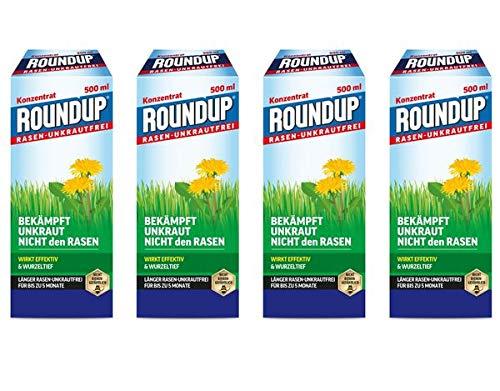 Evergreen Garden Care Deutschland GmbH Roundup Rasen-Unkrautfrei Konzentrat 2 l - zur Einzelpflanzenbehandlung von Unkräutern im Rasen