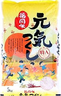 無洗米 プロが選ぶ一等 米 食味ランク 特A 元気つくし 5kg 精米 福岡県産