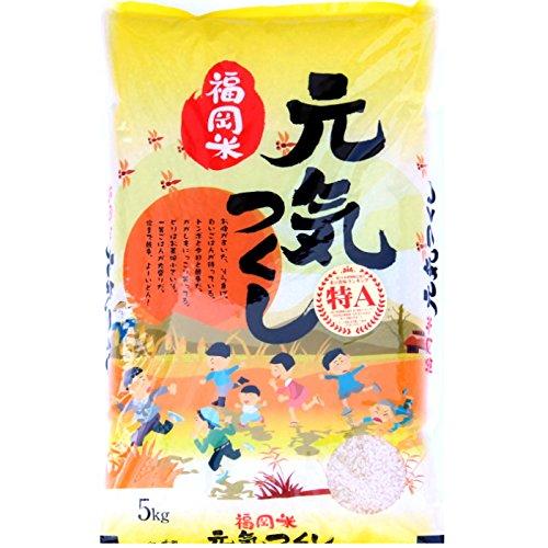 [前田家] 無洗米 プロが選ぶ一等 米 食味ランク 特A 元気つくし 5kg 精米 福岡県産