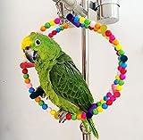 Luoshan pájaro del Loro de Arco Escalada Columpio de Rueda Anillo Juguete, tamaño: 15 cm Diámetro