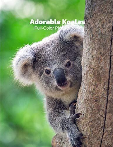 Adorable Little Koalas Full-Color Picture Book: Australia Bear Animals Photography Book