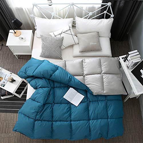 WJYHXW Comforter King Duvet Insert Down Quilted Comforter All Season,Plushpure Cotton Fill,Machine Washable,Warm Comforter 220X240cm(87X94inches),Blue