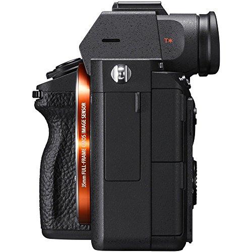 Sony a7III 24.2MP Full Frame Mirrorless Interchangeable Lens Camera Body + 64GB Memory & Flash a7III Accessory Bundle