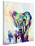 Art Canvas Print Mural, Modern Home Decoration Oil Painting, Abstract Decoration Picture For Family Living Room And Bedroom, 12x16 Inches 1 Pcs Elongated And Mounted (Abstract Elephant)