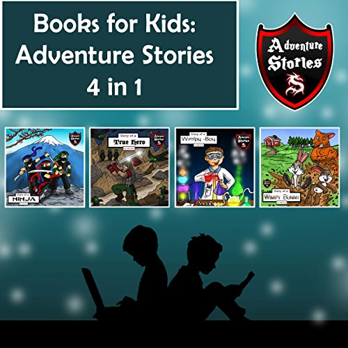 Books for Kids: Hero Diaries with Action and Adventure audiobook cover art