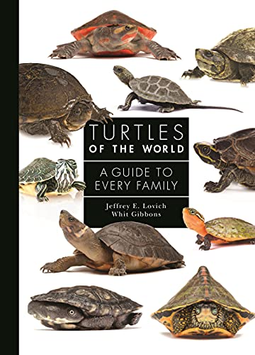 Turtles of the World: A Guide to Every Family