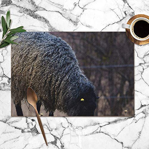 """Gotland Sheep On Meadow Typical Swedish Animals Wildlife Animal Washable Placemats for Dining Table Double Fabric Printing Polyester Place Mats for Kitchen Table Set of 6 Table Mat 12""""X18"""""""