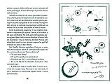 Immagine 2 la danza delle rane