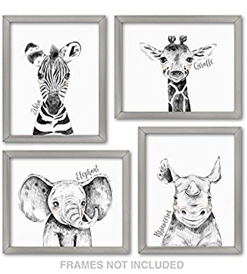 Confetti Fox Zoo Animals Safari Baby Nursery Wall Art Decor - 8x10 Unframed Set of 4 Prints - Zebra Elephant Giraffe Rhino - Gender Neutral Boy Girl Jungle Artwork Pictures