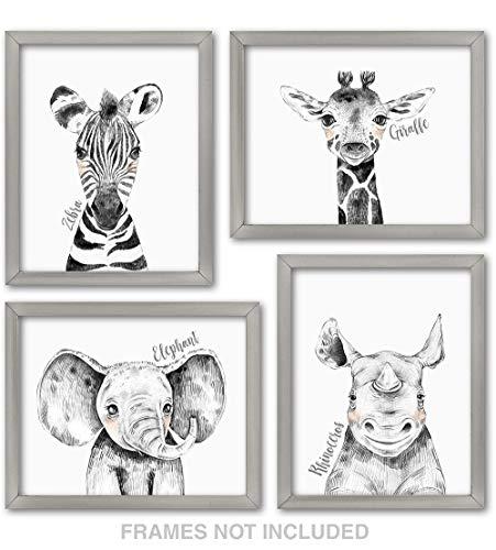 Confetti Fox Zoo Animals Nursery Wall Decor - 8x10 Unframed Set of 4 Art Prints - Safari Baby Zebra Elephant Giraffe Rhino