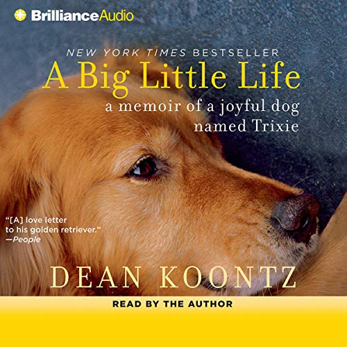 A Big Little Life  By  cover art