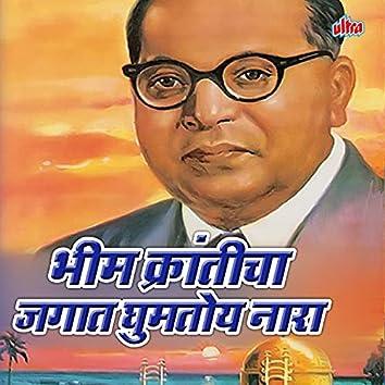 Bhim Kranticha Jagat Ghumtoy Nara