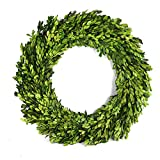 BoxwoodValley Preserved Boxwood Wreath Year Round Green Wreath for Halloween, Christmas Wr...