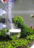 JARDLI Musik Glas CO2 Diffusor für Aquarium Pflanze (Φ40mm)