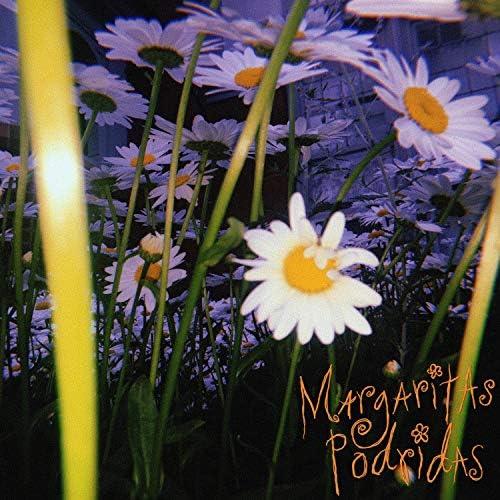 Margaritas Podridas