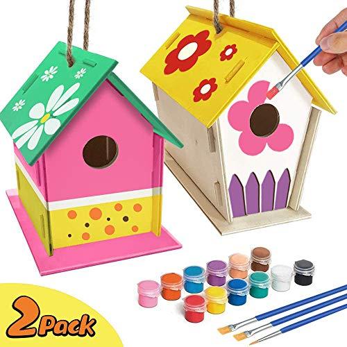 Kit de casa para pájaros para niños, Paquete de 2 Casitas para pájaros de Madera con 12 Pinturas de Colores y 2 Pinceles, Artes de Madera Hechas a Mano para niñas, niños de 3 a 12 años