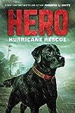 Hero: Hurricane Rescue (Hero, 2)