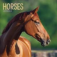 Horses Square Wiro Wall Calendar 2022