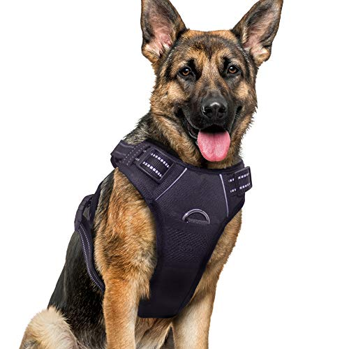 Dog Harness No Pull Reflective: Adjustable Pet Puppy Harness with 2 Leash Clips Comfortable Padded Dog Vest, Easy Control Handle for Small Medium Large Dogs Training, Outdoor Running Walking,XL
