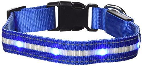 GoDoggie-GLOW - Collier de sécurité pour chien à DEL - Recharge USB - Visibilité et sécurité - 7 couleurs, 5 tailles - DEL ultra-lumineuses - Loisirs et sécurité - Garanti à vie – Bleu M