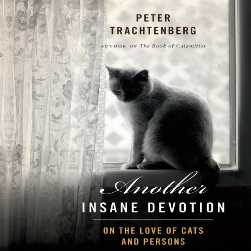 Another Insane Devotion audiobook cover art