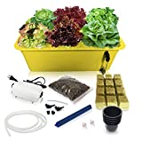DWC Hydroponic System Growing Kit - Large Airstone, 6 Sites Bucket with Air Pump - Complete Hydroponics Indoor Herb Garden Starter Kit for Kitchen - Grow Super Fast