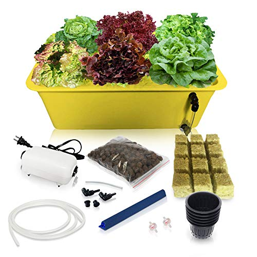 DWC Hydroponic System Growing Kit - Large Airstone, 6 Sites Bucket with Air Pump - Complete...