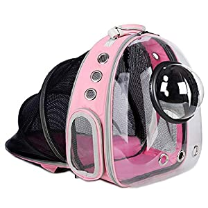 AJY Pet Clear Cat Backpack Carrier Breathable Foldable Pet Rucksack Carrier for Puppy Dog Cat Lightweight Cat Backpack Designed for Travel, Hiking, Walking & Outdoor Use