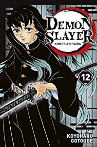Demon Slayer Edition simple Tome 12