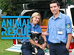 Image: Watch Animal Rescue | Featuring extraordinary stories of courage and humanity, Animal Rescue is animal drama as you've never seen before