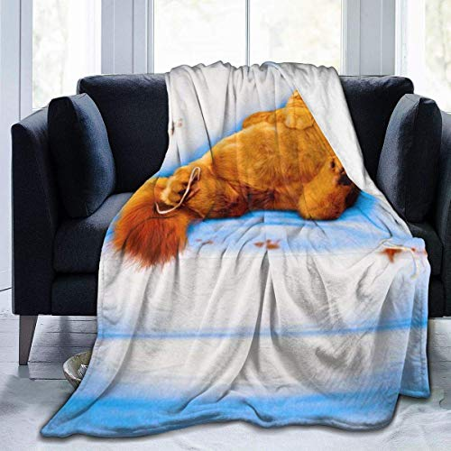 Lsjuee Sofá Blanco Garfield Manta Manta de Franela de Microfibra Mantas de Tiro Súper Suave Fuzzy Luxury Adecuado para Cama Sofá Viaje Four Seasons Manta 80 x 60 Pulgadas
