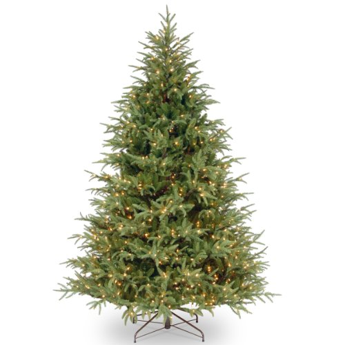 National Tree 7.5 Foot 'Feel Real' Frasier Grande Tree with 1000 Clear Lights, Hinged (PEFG3-308-75)