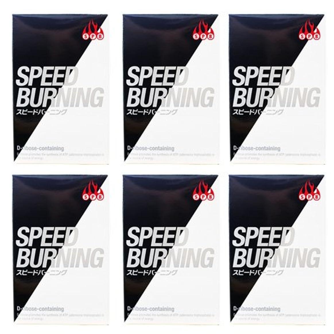 広がり熱狂的な二層スピードバーニング SPEED BURNING×6個