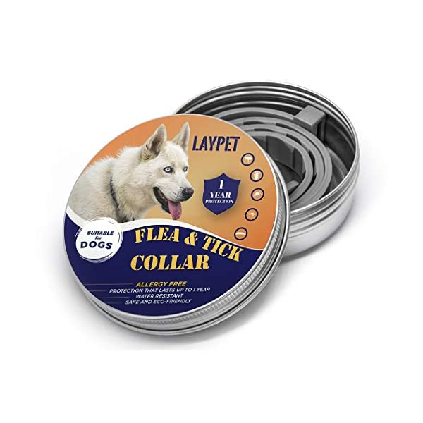 Laypet Flea and Prevention for Dogs, Natural and Hypoallergenic 12 Months Flea and Tick Control for Dogs, One Size Fits All, 25 inch – Herbal, Non-Toxic Dog Flea Treatment