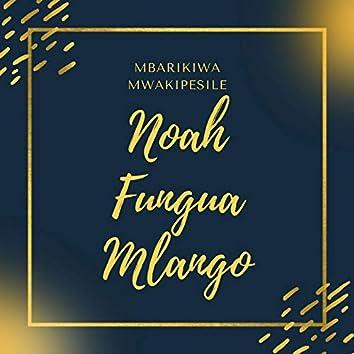 Noah Fungua Mlango